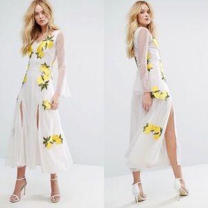 🆕 Aeryne Lemon Print Mesh Embroidered Maxi Dress